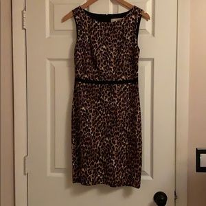 Ann Taylor Loft leopard print dress